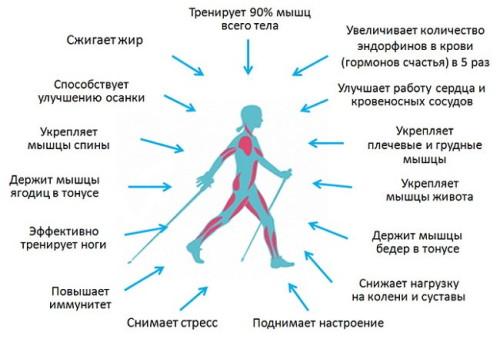 Польза от быстрой ходьбы