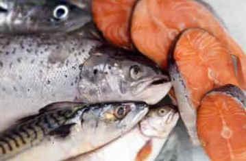 Жирные сорта рыб