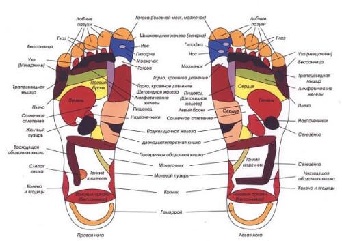 Активные зоны на ступнях