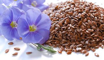 Цветки и семена льна