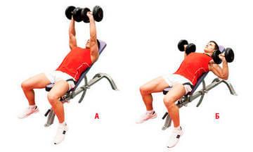 Упражнения с гантелями для груди