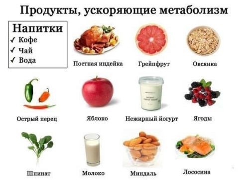 Продукты, улучшающие обмен веществ (метаболизм)