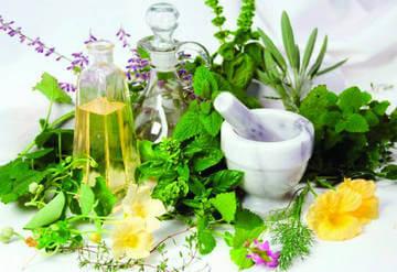 Рецепты народной медицины для снижения давления
