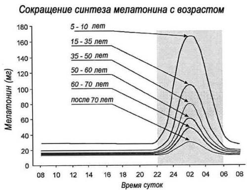 Зависимость синтеза мелатонина от возраста человека